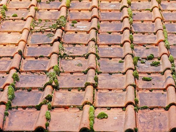 Rifacimento del tetto e Superbonus   Baschieri Costruzioni